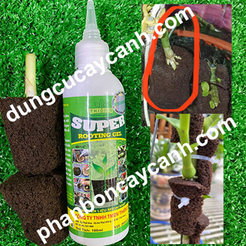 Kích rễ Uơm Ky Rooting Gel super Made in JORDAN